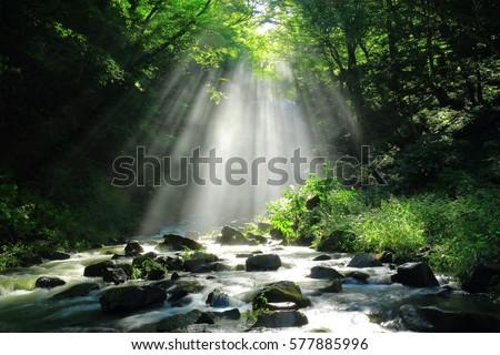 Akita Prefecture, kameda fudo waterfall #577885996