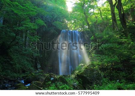 Akita Prefecture, kameda fudo waterfall #577995409