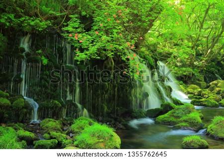 Akita Prefecture summer waterfall #1355762645