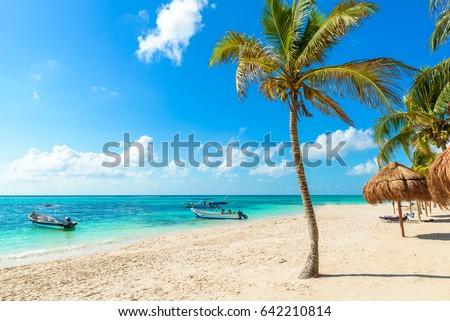 Shutterstock Akumal beach - paradise bay  Beach in Quintana Roo, Mexico - caribbean coast - Riviera Maya