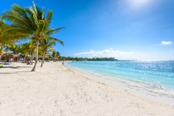 Akumal beach - paradise bay  - tropical beach in Quintana Roo, Mexico - caribbean coast