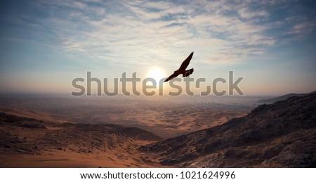 AL FAYA Mountain - DUBAI - UAE transportation concept Foto stock ©