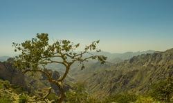 Al Hada Mountain in Taif City