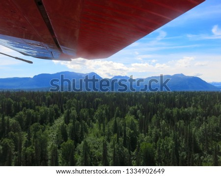 Alaskan Wilderness from Airplane #1334902649