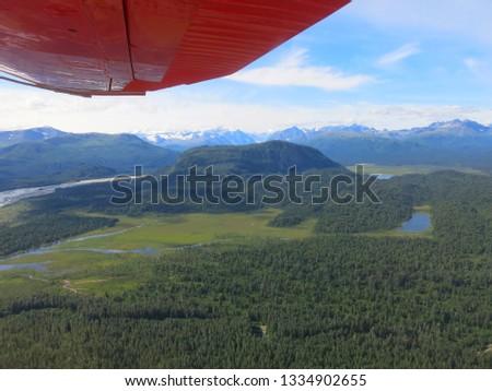 Alaskan Wilderness from Airplane #1334902655