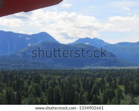 Alaskan Wilderness from Airplane #1334902661
