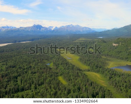 Alaskan Wilderness from Airplane #1334902664
