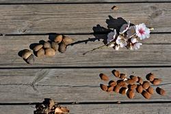 Alcalali, Valencia, Spain: 02.02.2020; The almond fruit are on table