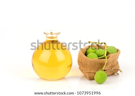 Alexandria laurel, Indian laurel and Tamauu oil. Thai herbs and herbs have medicinal properties (fresh and infusion for oil or essential oil) #1073951996