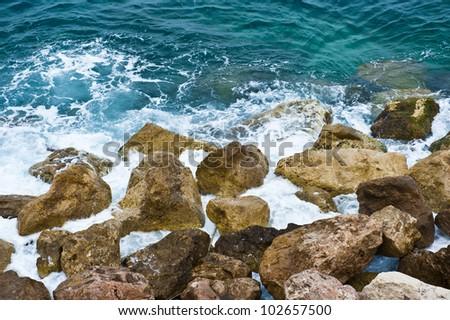 Algae on the rocks of the white foaming Mediterranean Sea.