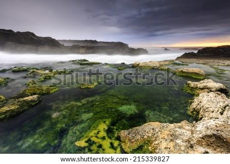 Algal coast in south Iceland/Atlantic coast