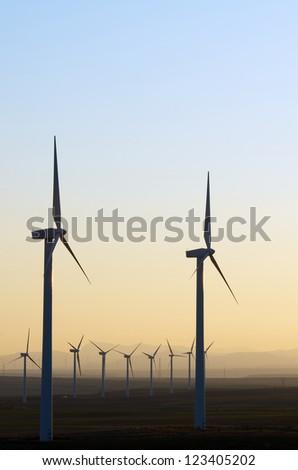 aligned windmills for renowable electric production at sunset, Pozuelo de Aragon, Zaragoza, Aragon, Spain