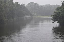 aliyar dam lake water green forest near mountain dam Water green scenary in mist rain season