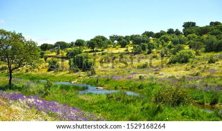 Aljucen river in the natural landscape of Cornalvo, a natural park in the heart of Extremadura, Spain