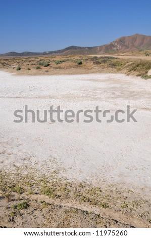 Alkaline deposits create stark white areas, Soda Lake, Carrizo Plain National Monument, California