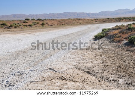 Alkaline deposits create stark white areas, Soda Lake, Carrizo Plain National Monument, California - stock photo