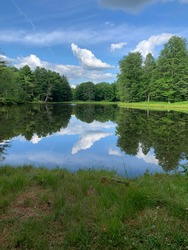 Allegany State Park Pond Reflection
