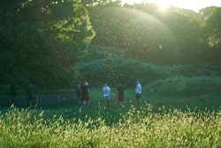 Allergies or Coronavirus Spread: Visible Cloud of Pollen and Particles at Sunset in Front of a Group of Teenagers Playing in a Public Park. Flare Gives the Impression of a Sphere Lingering Over Them