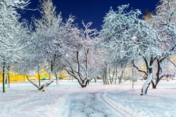 alley evening park in a snowy