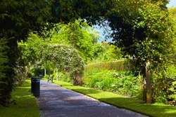 Alley in Belfast Botanic Gardens, Northern Ireland