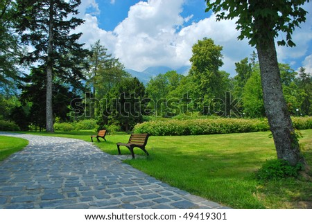 alley with benches in park