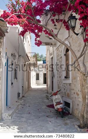 Alleyway in Naxos, an Isle of Greece