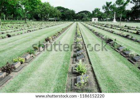 Allied War Cemetery honored Kanchanaburi Thailand. #1186152220