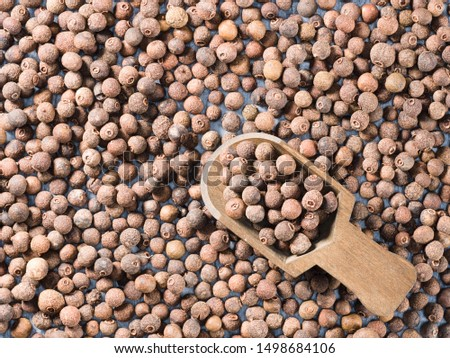 Allspice (Jamaica pepper) in a wooden scoop on allspice background diagonally #1498684106