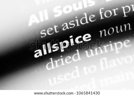 allspice word in a dictionary. allspice concept. #1065841430
