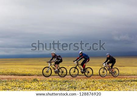 "ALMATY, KAZAKHSTAN - MAY 2:V.Skorobogatov (N5),A.Pomortcev (N25) and K.Babin (N3) in action at Adventure mountain bike marathon ""Jeyran Trophy 2010"" May 2, 2010 in Almaty, Kazakhstan."