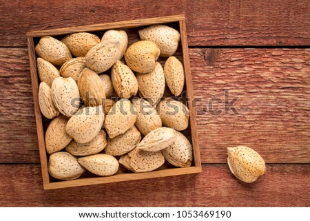 almond nuts in shells  in a wooden box against rustic barn wood