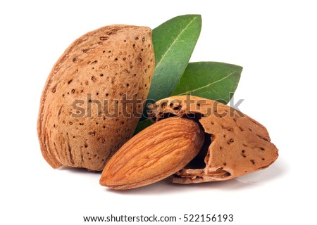 almonds in their skins and peeled with leaf isolated on white background #522156193