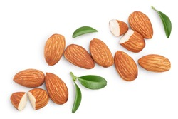 Almonds nuts with leaves isolated on white background with clipping path and full depth of field. Top view. Flat lay