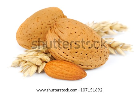 almonds with wheat on white closeup