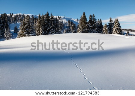 Almost Untouched Powder Snow Landscape, Ski Resort Megeve, French Alps, France