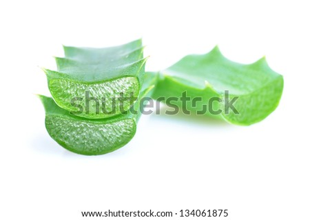 Aloe fresh leaf. Isolated over white background