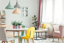 Aloe in pink pots on wooden table in pastel apartment interior with plant and armchair next to sofa with cushions