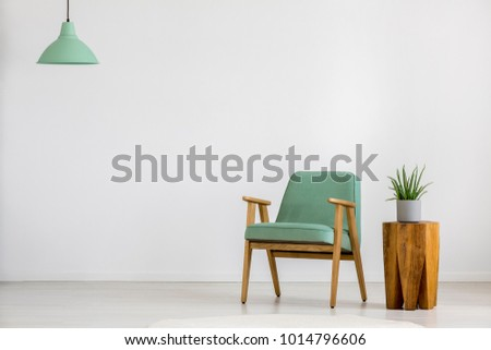 Aloe on wooden stool next to vintage green armchair against white wall with copy space in empty room #1014796606