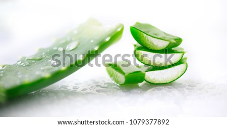 Aloe Vera closeup. Sliced Aloevera natural organic renewal cosmetics, alternative medicine. Organic Skin care concept. Isolated On white background.  Stockfoto ©
