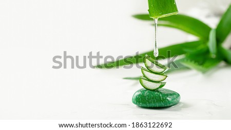 Aloe vera essence gel dripping from the leaf on white background. Skin care, copy space Photo stock ©