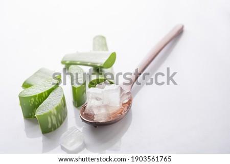 aloe vera gel on wooden spoon with aloe vera on white background,aloe vera is tropical green plants.Sliced Aloe Vera natural organic renewal cosmetics, alternative medicine. Organic Skin care concept.