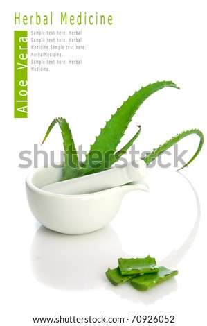 Aloe vera herbal medicine - stock photo
