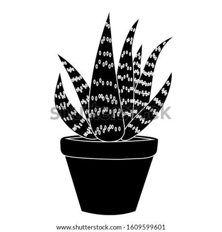 Aloe vera in a clay pot simple. Isolated stock botany illustration