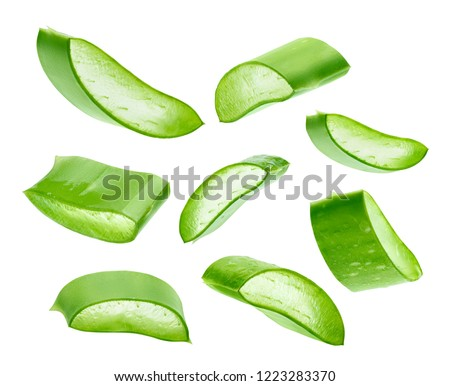 Aloe Vera isolated on a white background
