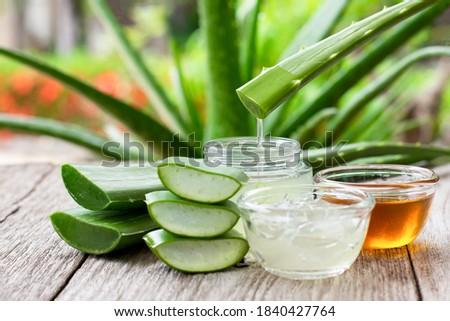 Aloe vera leaf with aloevera gel and honey on wooden table with green nature background.