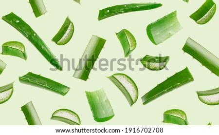 Aloe vera seamless pattern on green background.