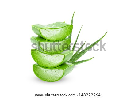 Aloe vera slice on white background.