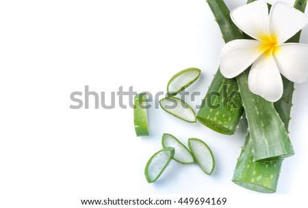 Aloe Vera sliced isolated on white background, top view and copy space