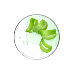 Aloe Vera slices with essence on petri dish over white background