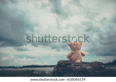 Alone bear doll,very sad,alone,lonely,dark tone,vintage stlye